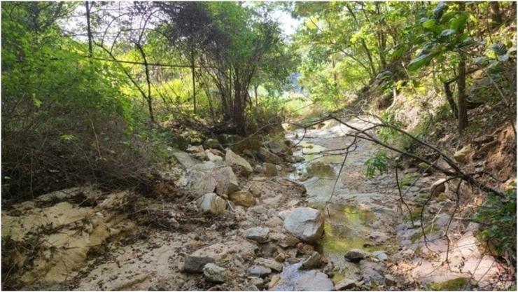 산지지역 무분별한 개발행위 개선 및 계획적 관리지침 시행